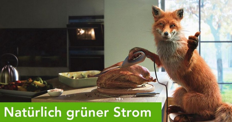 Auschnitt aus Axpo Homepage mit Fuchs. Natürlich grüner Strom